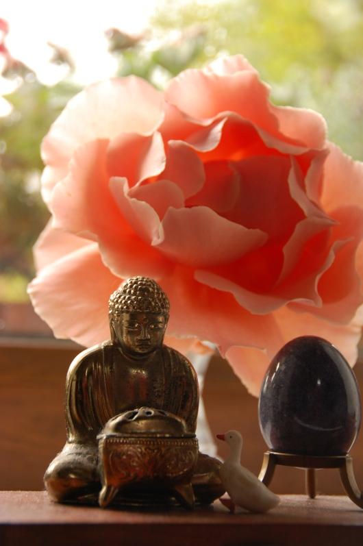 just joey and buddha